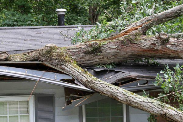 VENTS VIOLENTS l Etes-vous assuré contre les risques de tempête ?
